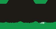 IDDIS лого