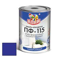 Эмаль алкидная OLECOLOR ПФ-115 глянцевая синяя 0.8 кг купить в интернет-магазине Чайна-строй
