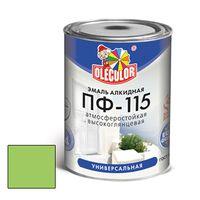 Эмаль алкидная OLECOLOR ПФ-115 глянцевая зеленое яблоко 2.7 кг купить в интернет-магазине Чайна-строй